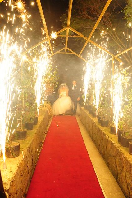火樹銀花紅地毯