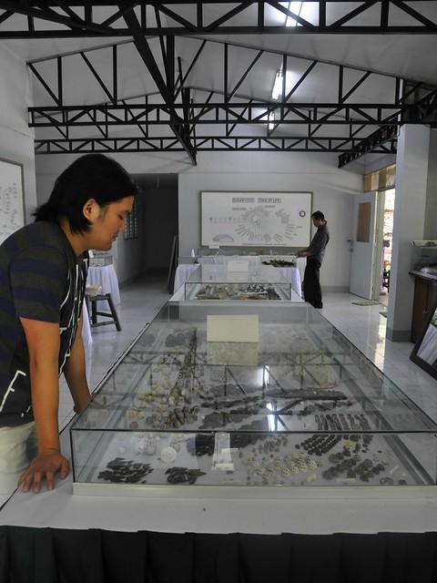 Museum of Natural History, NUEBG, Ilocos Norte