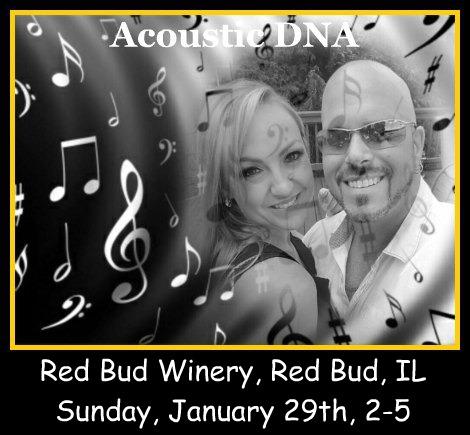 Acoustic DNA 1-29-17