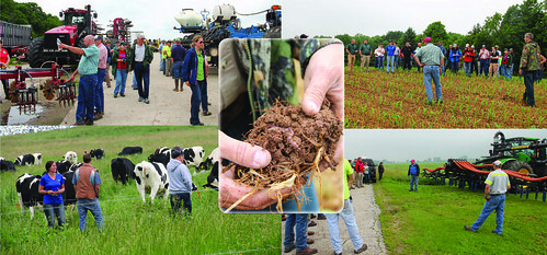 A composite of farm field days participants