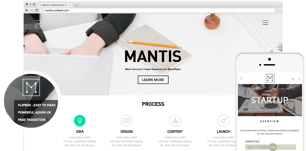 Codie Pie's Project: Mantis