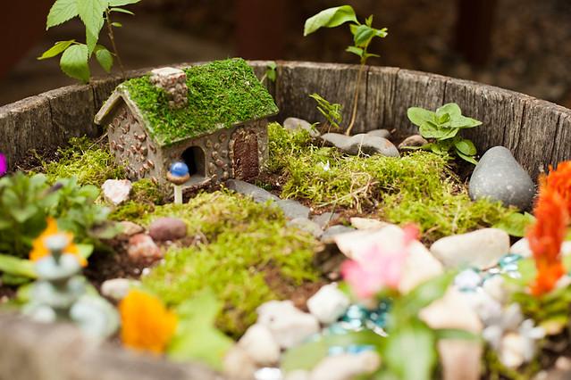 061015 Fairy Garden 007