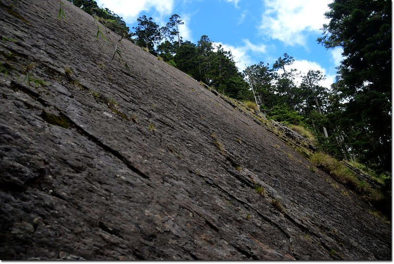 玉山登山步道大峭壁 6