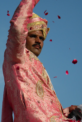 Jaipur Elephant Festival (with rose petals)