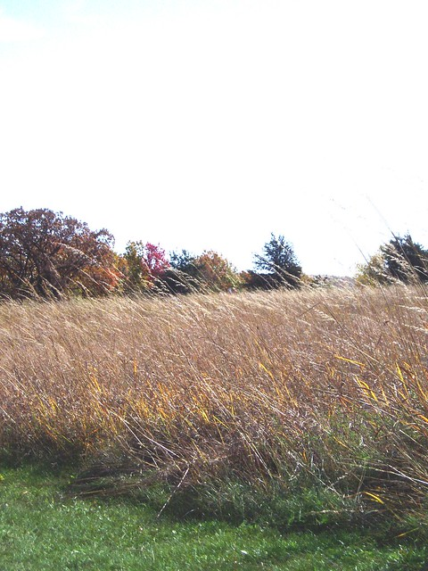 Afton State Park, MN - fall 2005