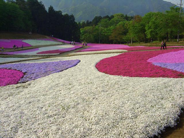 Hitsujiyama Park #01