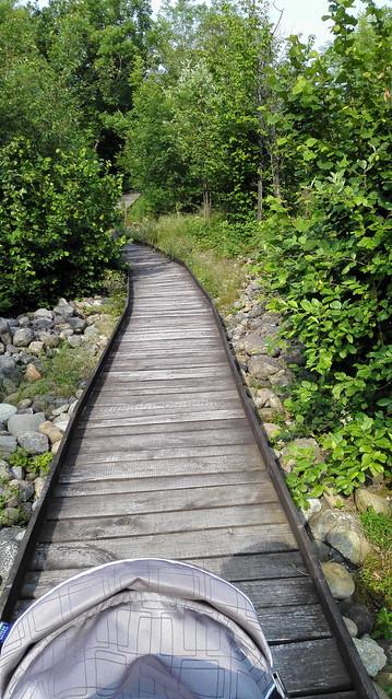 Sentiero tra la miniera
