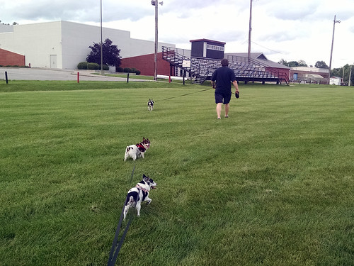 2015-06-13 - First Walk at the High School - 0005 [flickr]