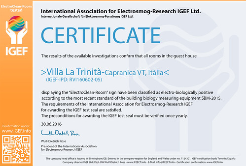 IGEF-Zertifikat-RVI-EN