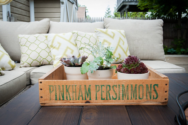 Small Crate used as a tray on the coffee table holding 3 plants in white pots