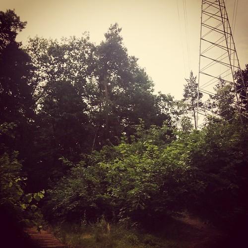 Rust. Vogeltjes. En pylonen. En planeten! #planetenpad #hiking