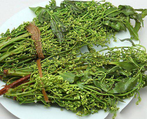 Description: Hoa sầu đâu ẩm thực Campuchia