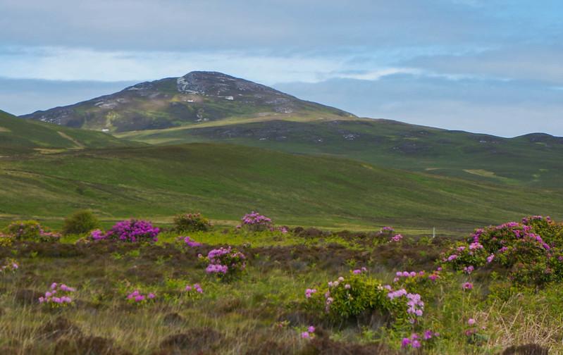 Scotland-31.jpg