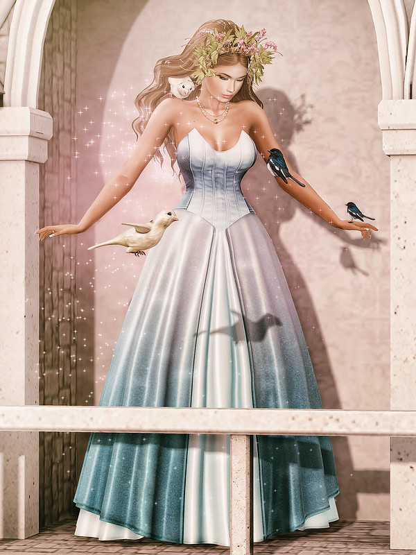 Enchantment Cinderella