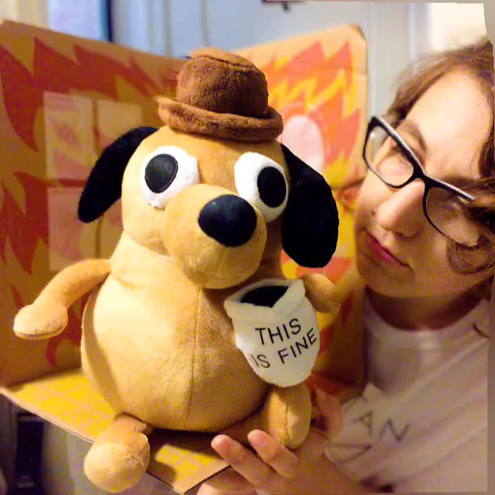 31588768612_8374320039_b this is fine art christine with our new this is fine plush