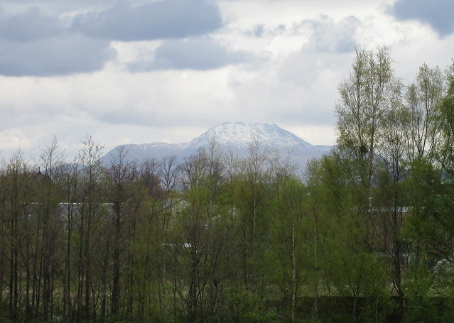 Ben Lomond From Dumbarton Football Stadium