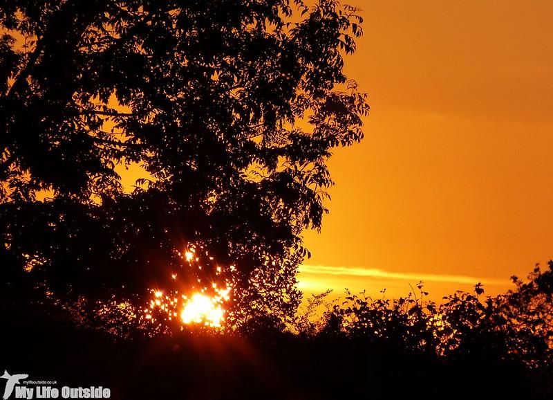 P1130283 - Sunset