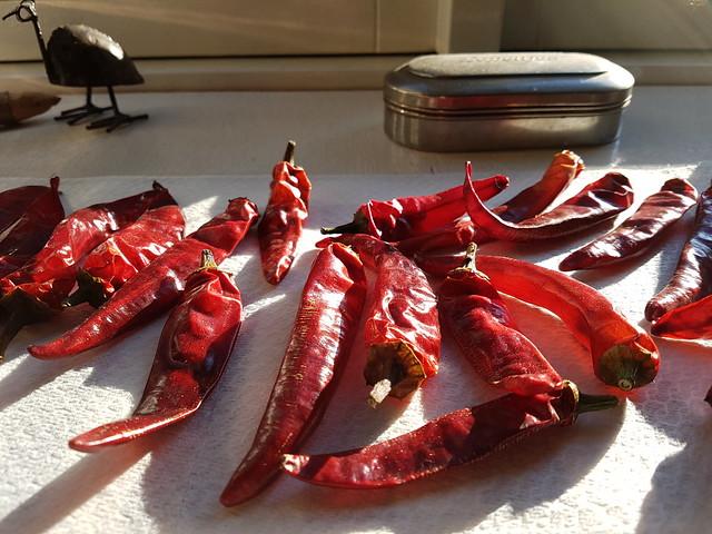 Gedroogde pepers van de Witte Brug...