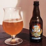 Grimbergen Zomer Wit (6% de alcohol) [Nº 165]