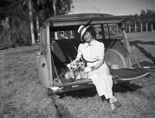 Mrs. Stephen Sanford watching a polo match with her dogs in Delray Beach | by State Library and Archives of Florida
