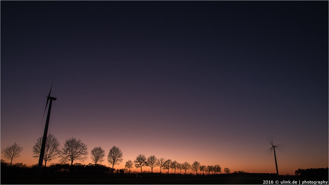 _nightwind