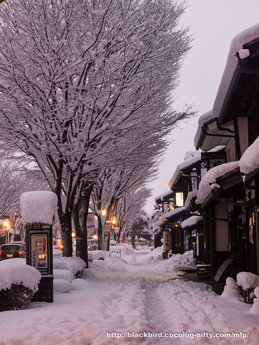 Snow day 1 #08