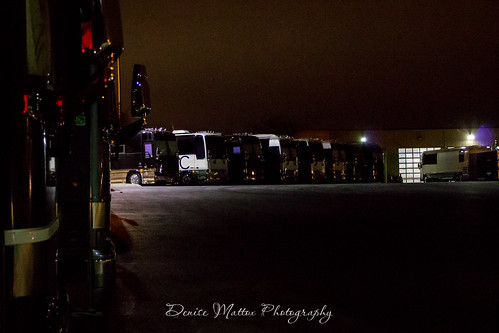009/365 : Sleeping buses