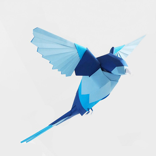 Blue Rosella Paper Sculpture by Marine Coutroutsios