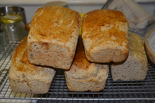 homemade bread June 15 1