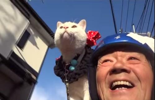 El gato Ryunosuke y su dueño