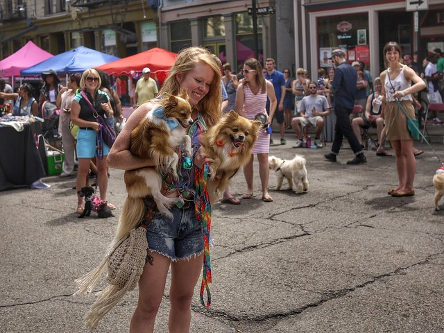 Second Sunday on Main: Dog Days