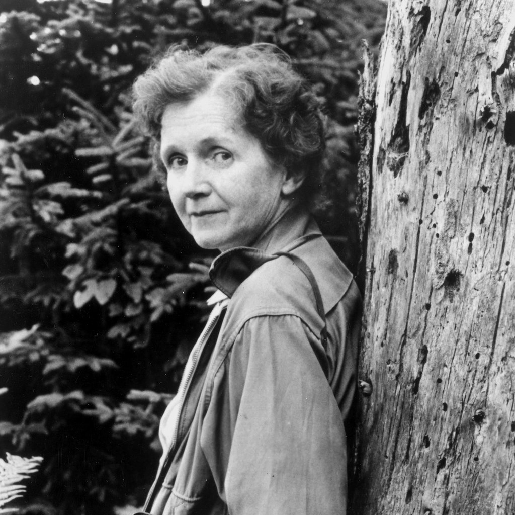 rachel carson essay Published: fri, 02 jun 2017 rachel carson's silent spring and the environmental movement thesis: in silent spring rachel carson starts an environmental movement by informing the public of the dangers of pesticides, which causes a shift in views towards pesticides and the harm they do to the environment.