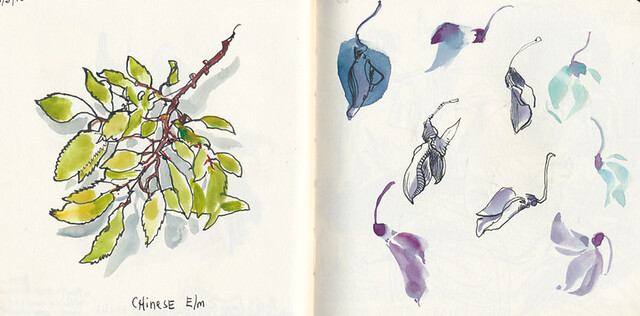 Sketchbook #89: Treasures