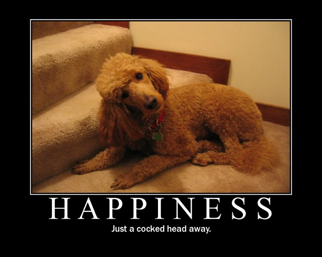 Happiness Motivational Poster Happiness Just A Cocked