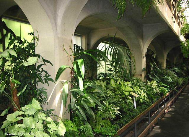 NZ garden designers, Landscaping ideas for New Zealand, Tr ...