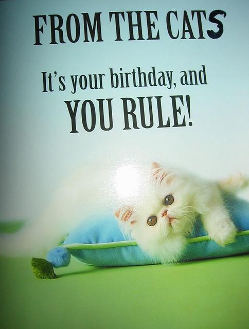 My Birthday Card From The Cats My Birthday Cards 2006 Bi Flickr