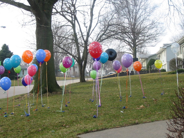 40TH BIRTHDAY LAWN SURPRISE | 40 balloons on the front ...