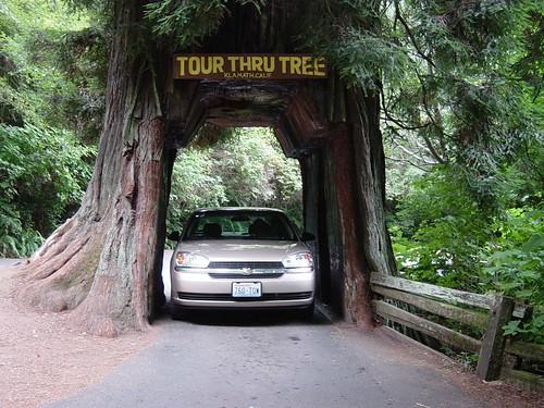 Car Rental Yosemite