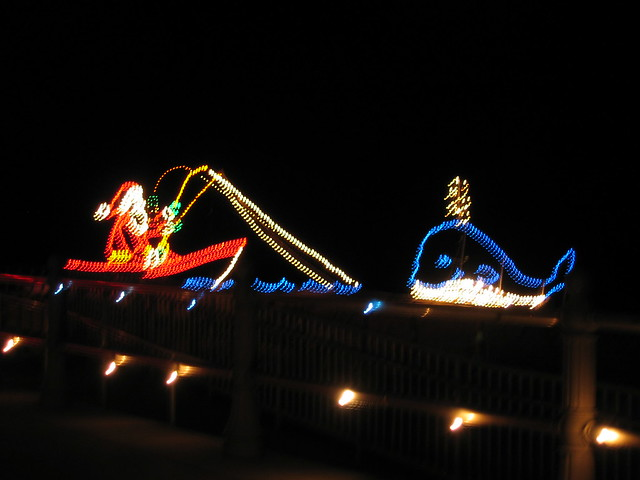 Christmas Lights - Virginia Beach | Flickr - Photo Sharing!