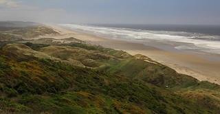 Oregon Dunes Oregon