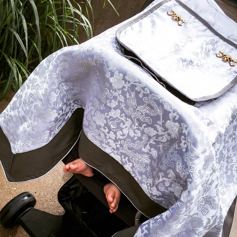 cute & little blog | petite fashion | little dream bird car seat canopy covers review