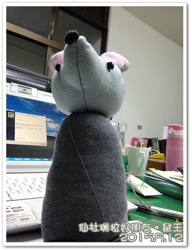 0512-鼠王 (1)
