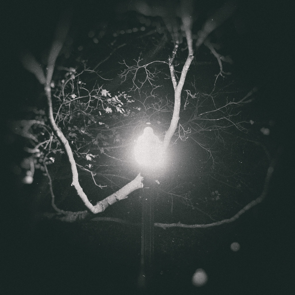 Ghostly Neuron Lamp