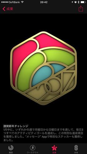 2017/1 Badge
