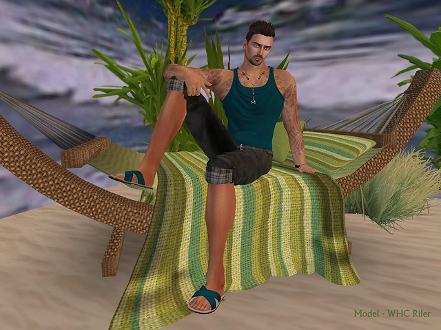 whc illi beach 2_001