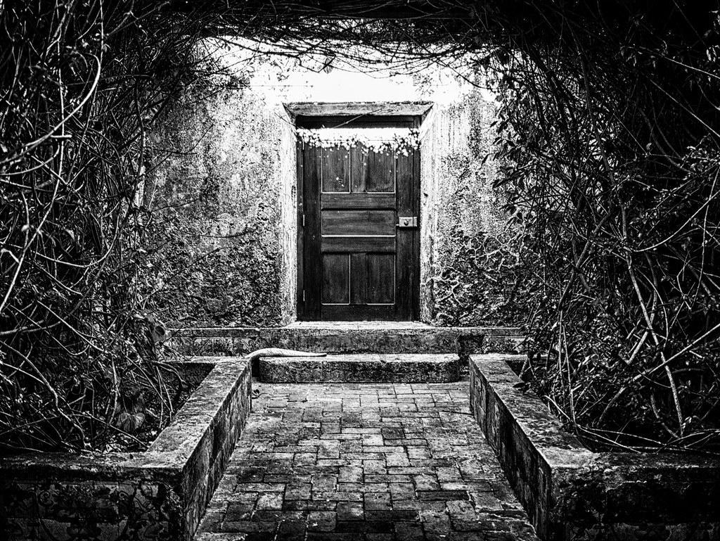 Secret Door | By Idreamofdaylight Secret Door | By Idreamofdaylight
