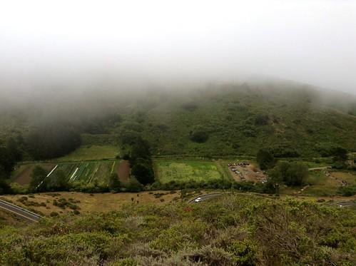 Green Gulch Farm