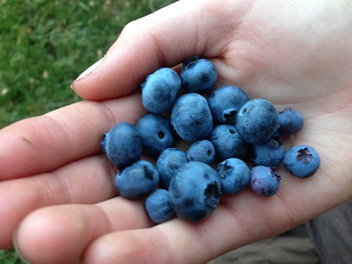The last handful. Yum!