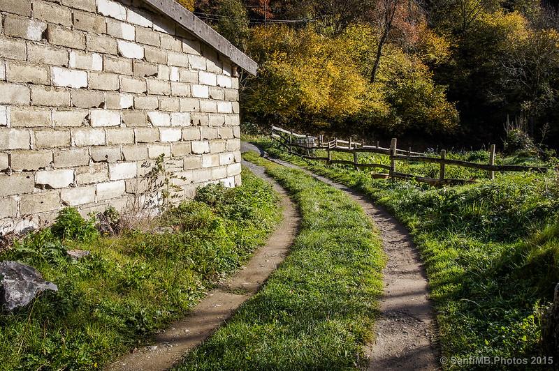 Agradable camino por detrás de un cobertizo