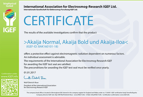 IGEF-Zertifikat-BAK-EN